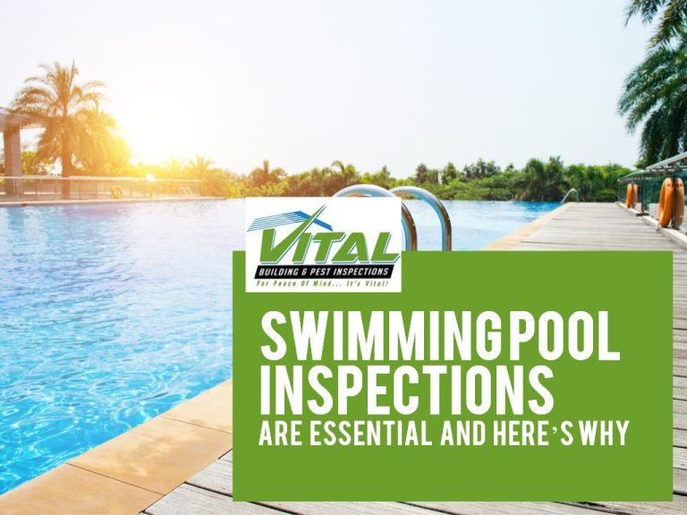 Swimming Pool Inspections are Essential