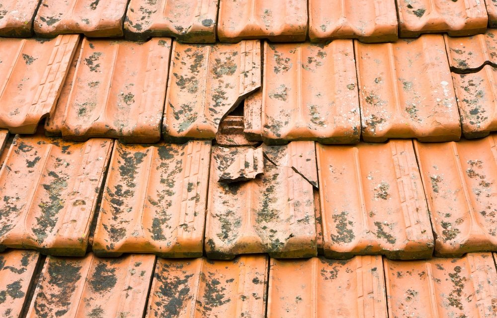 broken roof defects reports