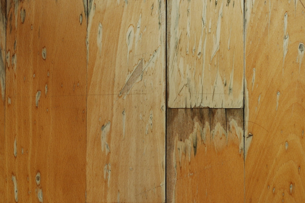 timber floor damage