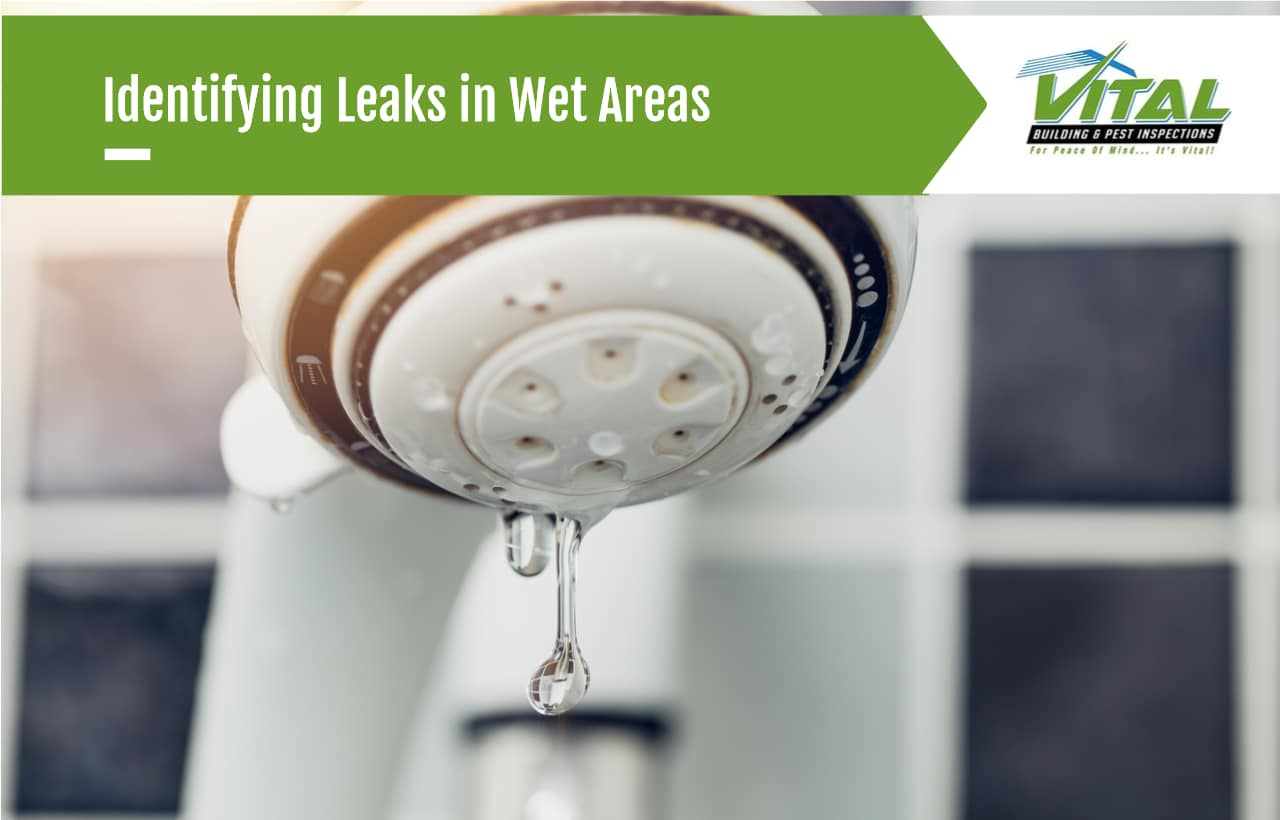Identifying Leaks in Wet Areas
