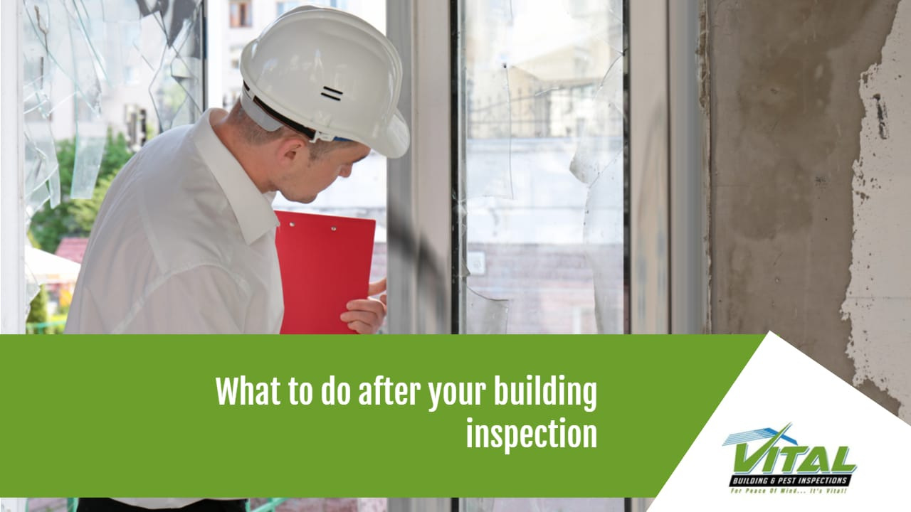 what to do after a building inspection