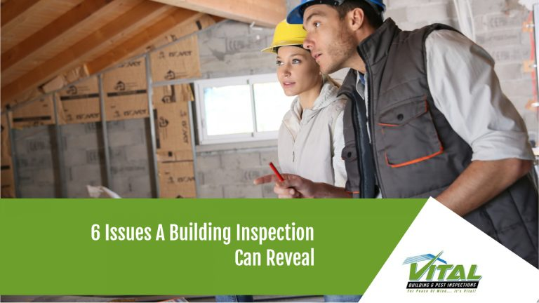 6 Issues A Building Inspection Can Reveal