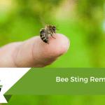 Bee Sting Remedies