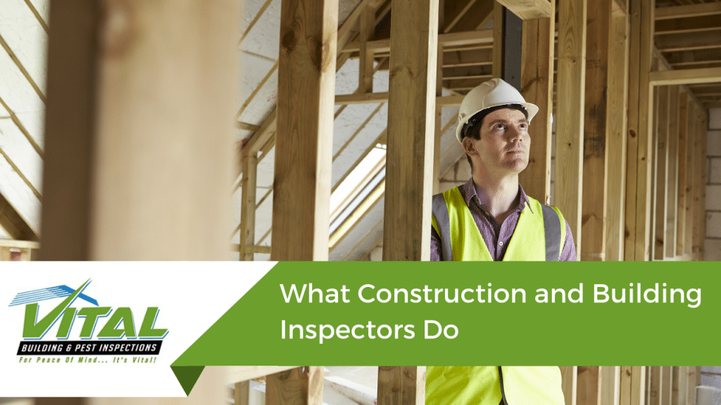 building inspectors - Vital Building and Pest Inspections