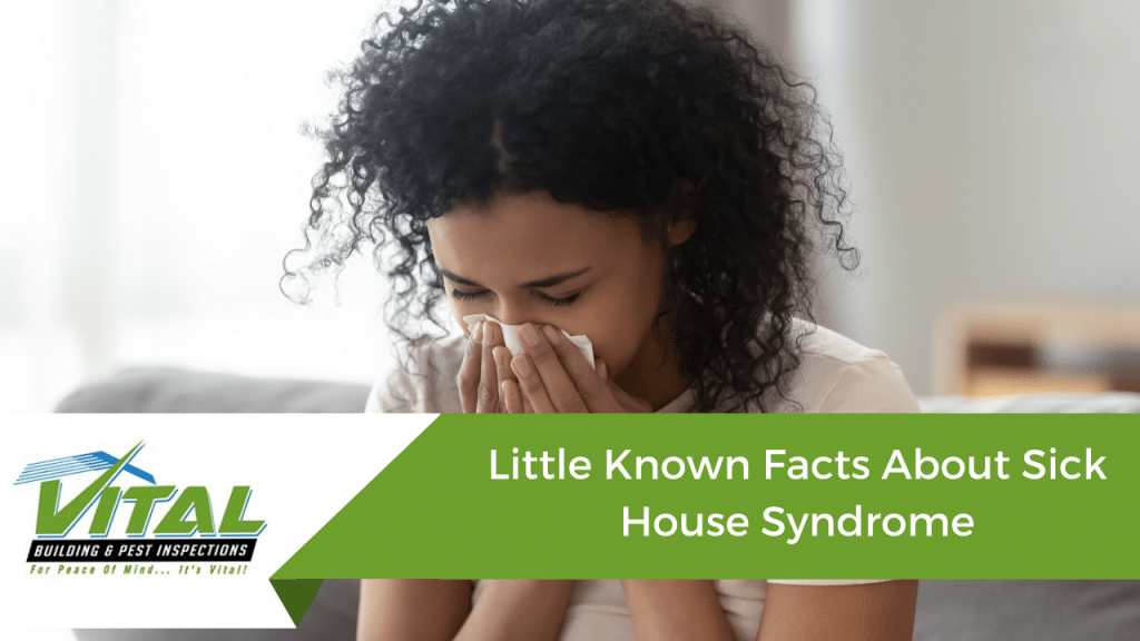 Sick house syndrome - Vital Building and Pest Inspections