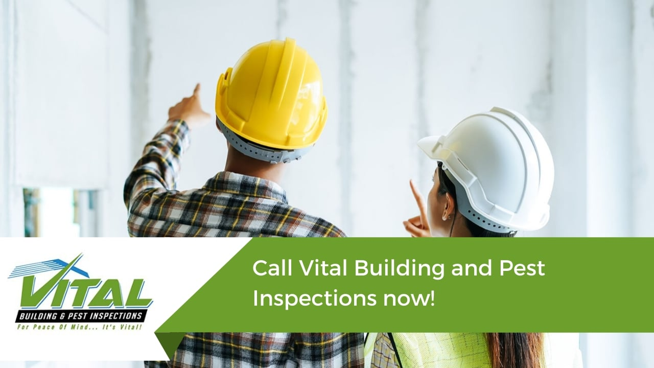 Call Vital Building and Pest Inspections now!