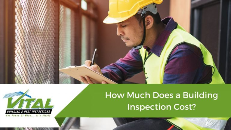 How Much Does a Building Inspection Cost