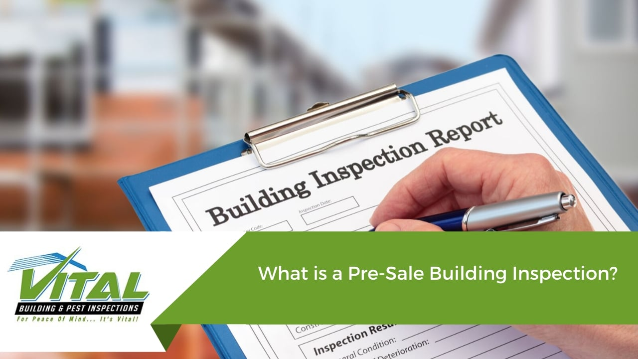 What is a Pre-Sale Building Inspection