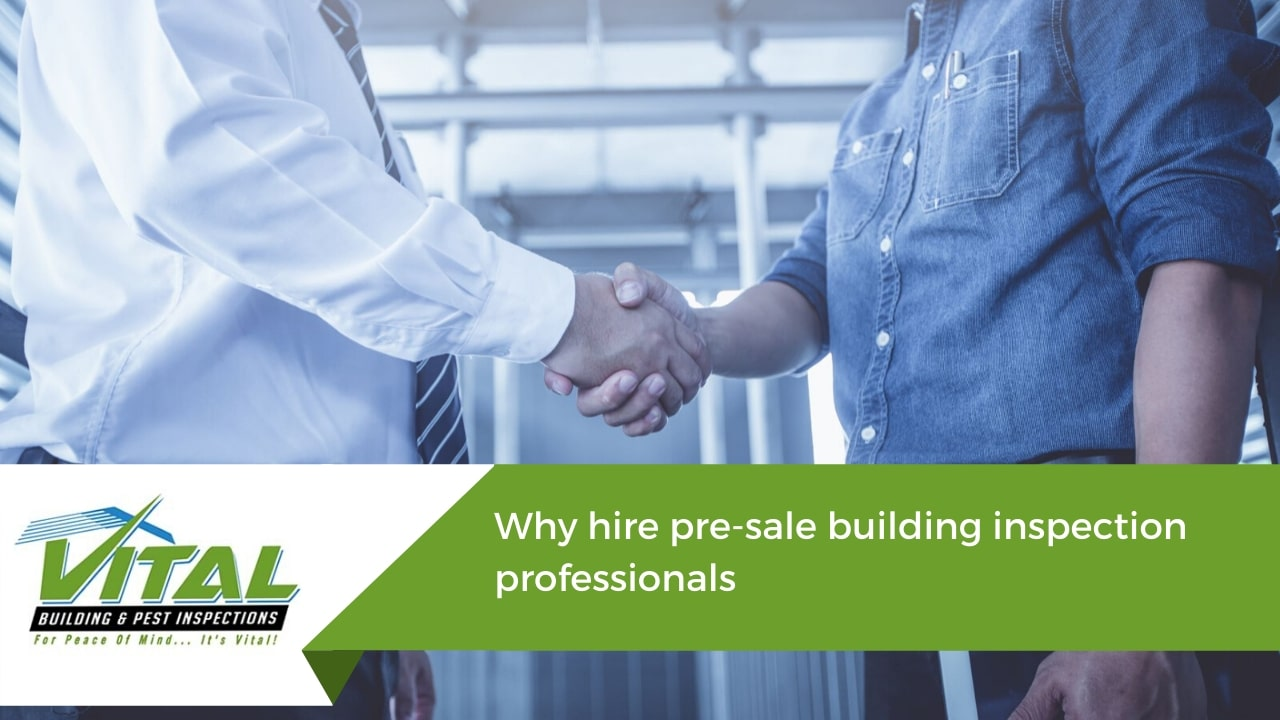 Why hire pre-sale building inspection professionals