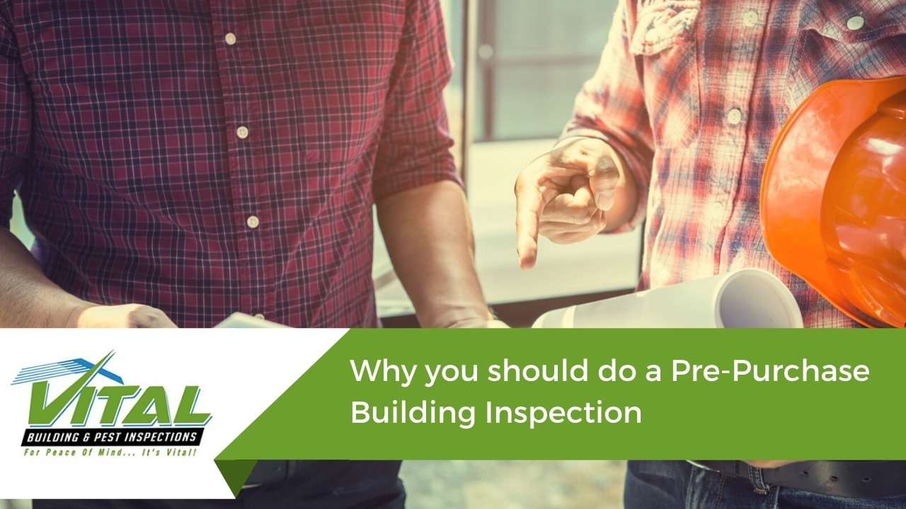 Why you should do a Pre-Purchase Building Inspection