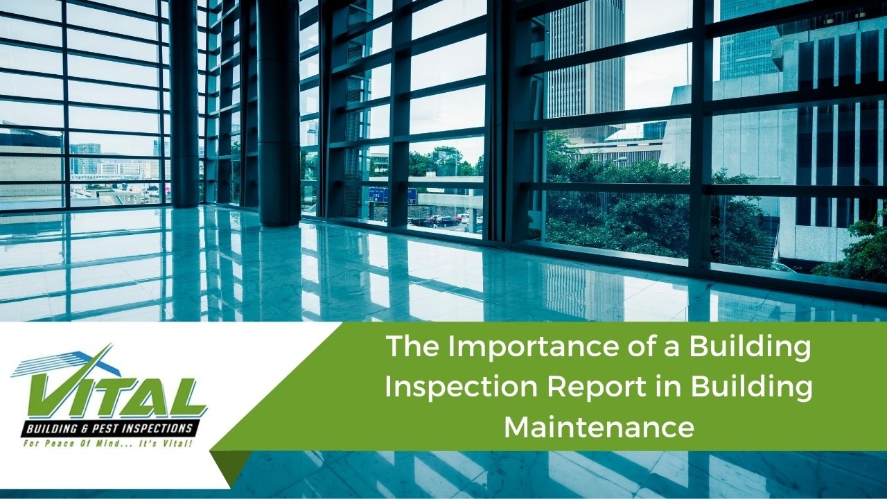 The Importance of a Building Inspection Report in Building Maintenance