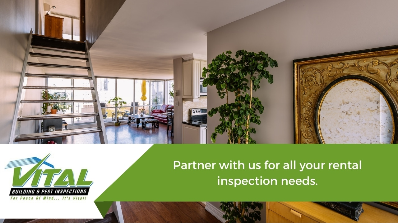 Partner with us for all your rental inspection needs.