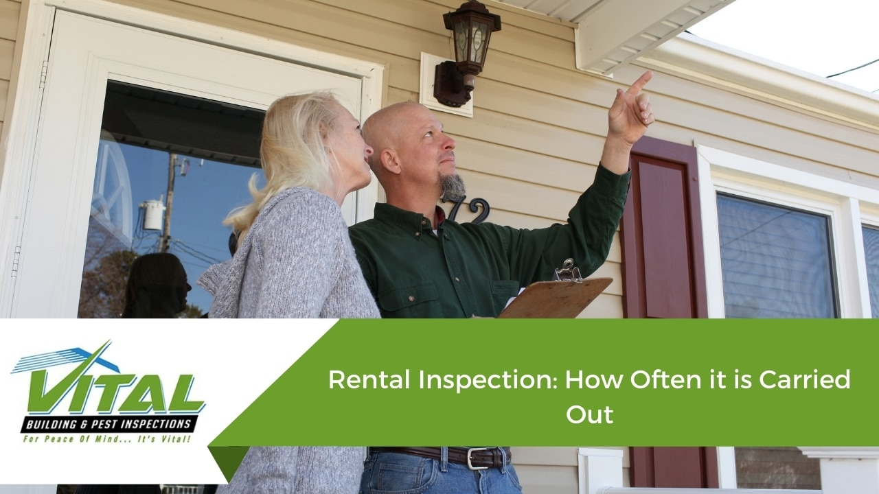 Rental Inspection: How Often it is Carried Out