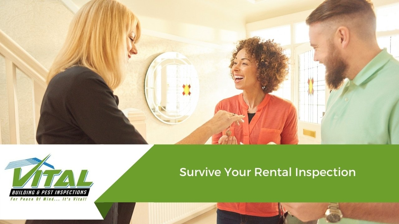 Survive Your Rental Inspection
