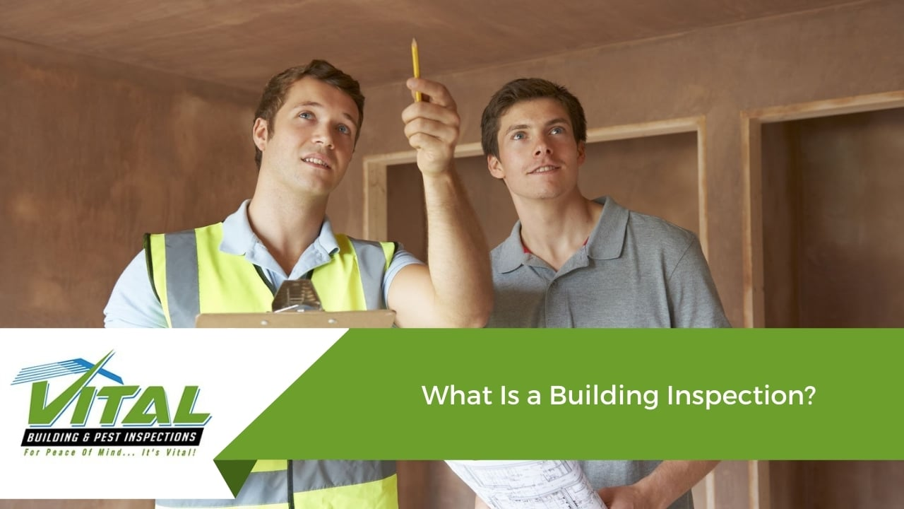 What Is a Building Inspection