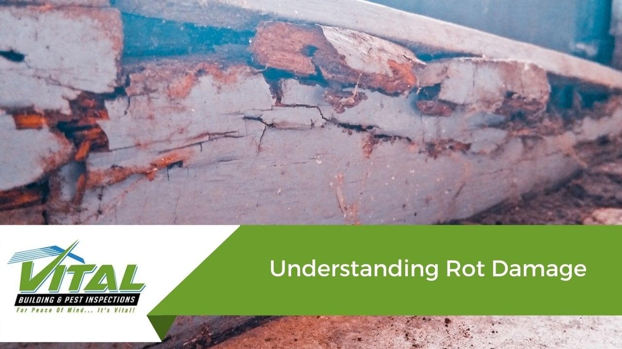Understanding Rot Damage